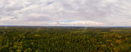 Wonderful landscape with a foggy forest after the rain, the day turns into a beautiful one, panoramic aerial view.