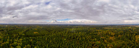 Wide green forest view at the bavarian tourism hotsport munich recognizable at the horizon. Idyllic nature panorama. 写真素材
