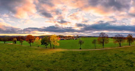 Autumn mood at sunset behind a row of fall colored trees with the undergoing sun as an aerial panorama. Beautiful landscape background. 写真素材
