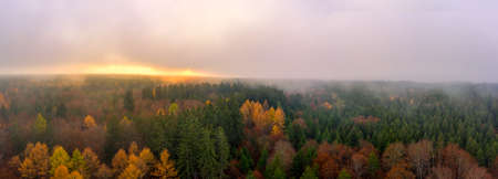Fog over a autumn colored forest at the autumn season, a panoramic mystical view at the sunset shot by a drone.