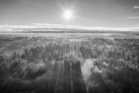 Sunny foggy morning with sunrays and shadows at the treetops of a wide forest.