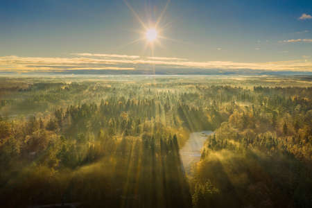 Wonderful foggy environmetal scenery - sunny aerial with the view over a wide forest, autumn moment in germany.