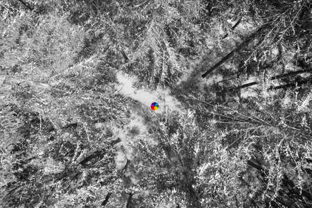 Aerial view of snowy pine at a colorful rainbow colored umbrella in the middle of the aerial photo as a wonderful color contrast element. 写真素材