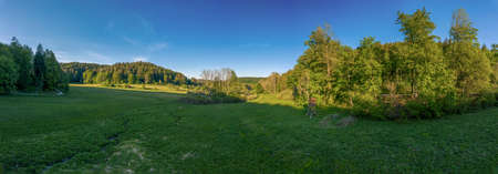 Idyllic view over a green meadow besides trees and a high stand under a blue summer sky. 写真素材