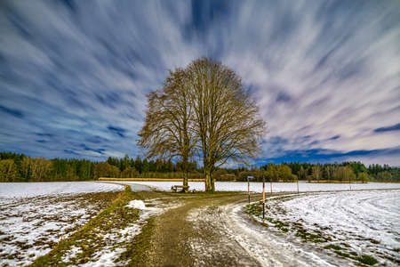 Beautiful long exposure of moving clouds over a single tree at a snowy winter landscape. 写真素材