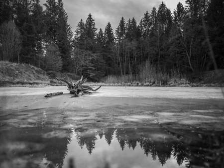 Winter landscape view over a frozen lake with parts of water, which is reflecting trees of the surrounding forest. 写真素材