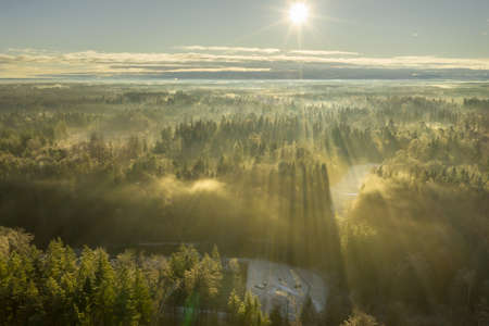 Wonderful foggy morning with an aerial view over a misty forest at the winter season while the sun is warming the treetops. 写真素材