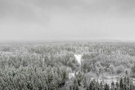 AERIAL: Flying over frozen snowy treetops towards countryside isolated little house in the middle of a snow covered forest in panoramic view.