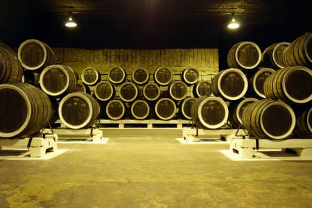fermenting: a lot of barel of wine in wine cellar in Crimea Ukraine