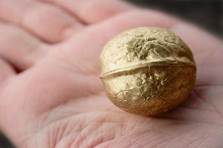 single golden walnut on woman hand photo