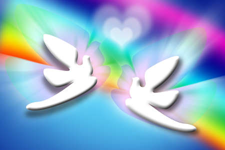 the best stylized couple doves and heart over rainbow background photo