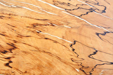 Attractive abstract closeup natural wooden teak texture  photo