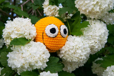 Yellow smiley among guelder rose flowers. Abstract composition. Stock Photo - 13690346