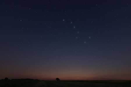 ursa minor: Beautiful Star at sunset Field with Constellations Ursa major, Leo minor, Leo, Draco Botes, Canes Venatici, Coma Berenices