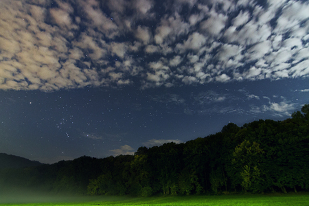 orion: Beautiful night sky Constellation of Orion, green forest, white clouds, starry night, fog