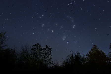 Constellation of Orion in night sky, The Hunter 版權商用圖片