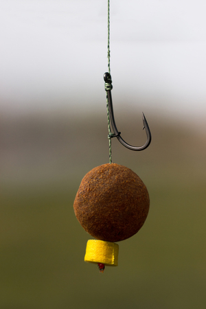fishing rig: Carp Bait, Boili Hair, Blow Back Rig, Carp Hook
