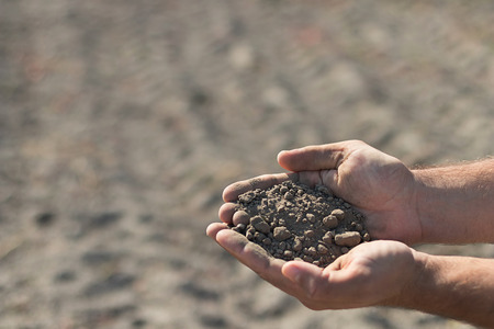 Hands holding a pile of soil above the ground. Hands with soil