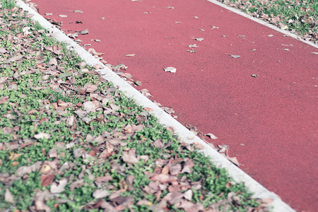 edition: Jogging track in the park. Autumn edition. Stock Photo
