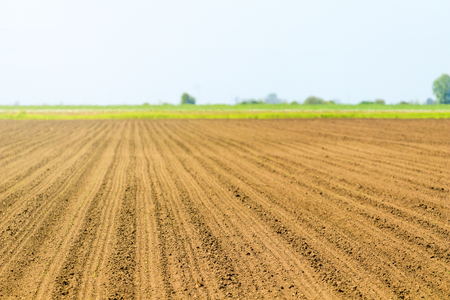 Sowed field. Agricultural fields in spring. Sowing crops. Stock Photo