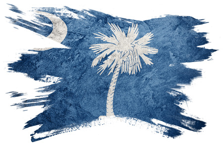 Grunge South Carolina state flag. South Carolina flag brush stroke.