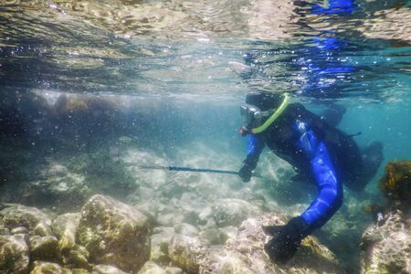 Spearfishing Diver Swimming in Shallow Sea Water