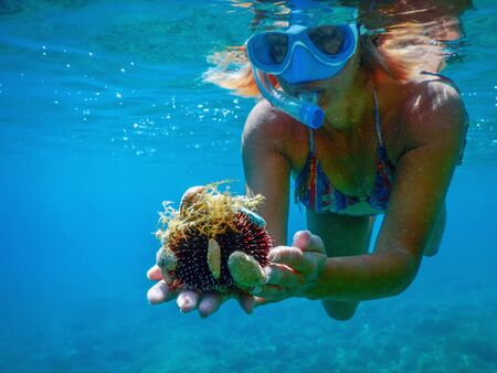 Young Women Snorkeling in the Tropical Sea Holding Sea Urchin