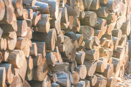 Pile of Wood, Stack of Firewood Close Up, Background Stok Fotoğraf