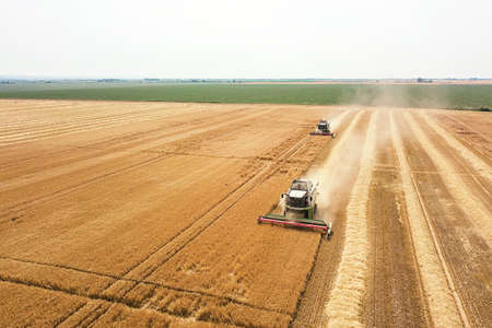 Combine harvester working on a wheat field. Combine harvester Aerial view. Stock fotó