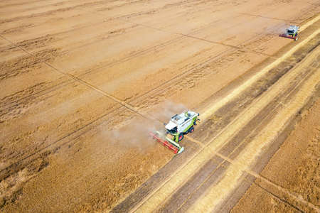 Combine harvester working on a wheat field. Combine harvester Aerial view. Imagens