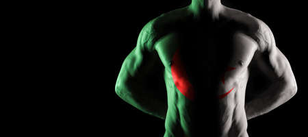 Algeria flag on muscled male torso with abs, black background Archivio Fotografico