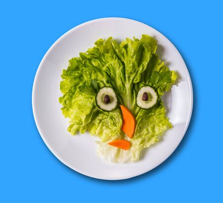 art food, funny face made of vegetables on the plate  Stock Photo