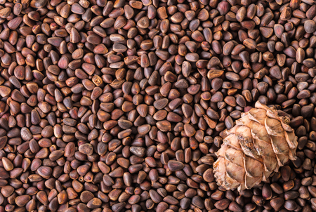 Food background, pine nuts and pine cone closeup Stock Photo