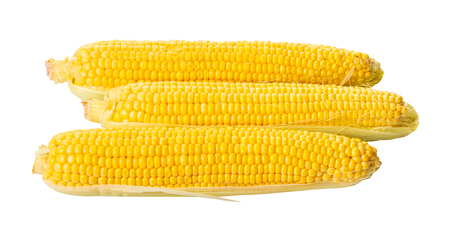 raw corn cob on a white isolated background