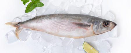 raw fish lying on ice with a slice of lemon