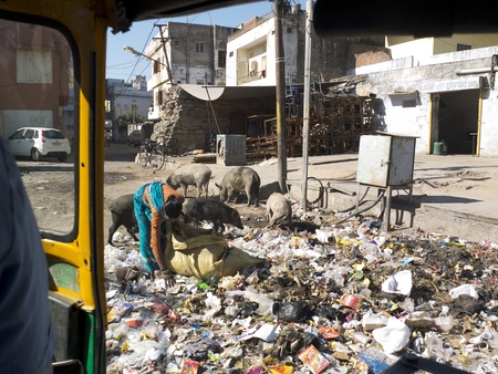 detritus: JAIPUR,  INDIA - MARCH 5: a woman is looking for food in a garbage-strewn street in the center of the city, on March 5, 2013, Jaipur, India.