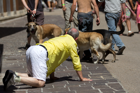 cantal: AURILLAC, FRANCE - AUGUST 22  a man on hands and knees in front of dogs as part of the Aurillac International Street Theater Festival, Cie Groupe Bernard Menaut,on august 22, 2013, in Aurillac,France  Editorial