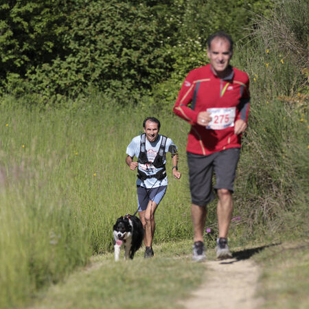 impaired: PAVIE, FRANCE - MAY 18  A dog leads a runner who is visually impaired on a countryside path at the Trail of Pavie, on May 18, 2014, in Pavie, France