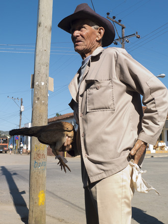 VINALES, CUBA - DECEMBER 14: an elegant old gaucho walking in the street is holding a chicken in his hand, we december 14, 2014, in Vinales, Cuba Editorial
