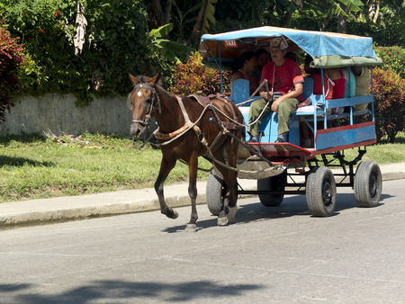 collectives: BARRACOA, CUBA - NOVEMBER 25: a man transport passengers in an old carriage pulled by a brown horse, on november 25, 2014, in Havana, Cuba.
