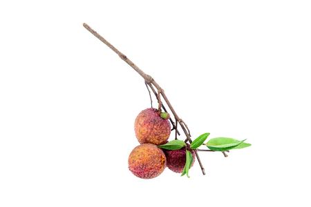 litchi: Fresh lychee Litchi isolated on white background