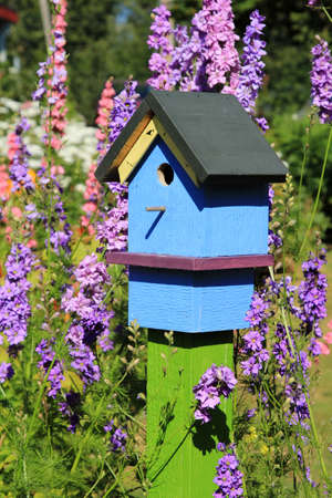 Brightly painted birdhouse among beautiful larkspur flowers Stock Photo - 9957011