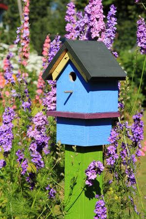 birdhouse: Brightly painted birdhouse among beautiful larkspur flowers Stock Photo