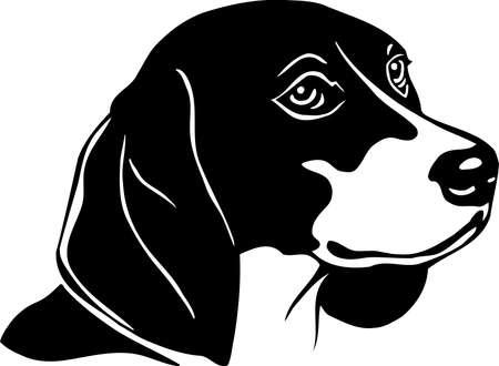 beagle: Beagle