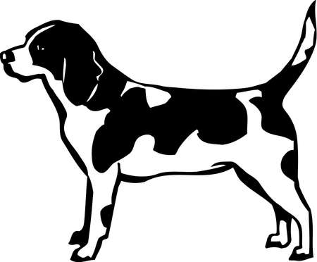 Beagle Stock Vector - 12945136