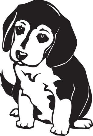 ビーグル犬の子犬