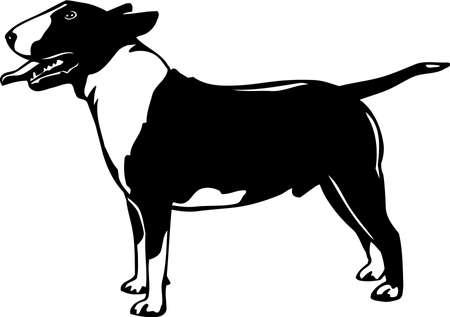 Bull Terrier Stock Vector - 12945131