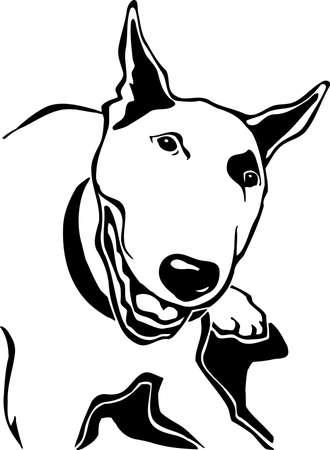 Bull Terrier Stock Vector - 12945155