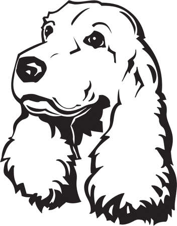 Cocker Spaniel Vectoren Illustraties En Clipart 123rf