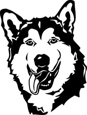 canines: Alaskan Malamute
